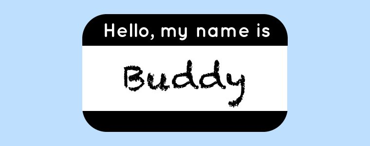 Hello my name is Buddy graphic